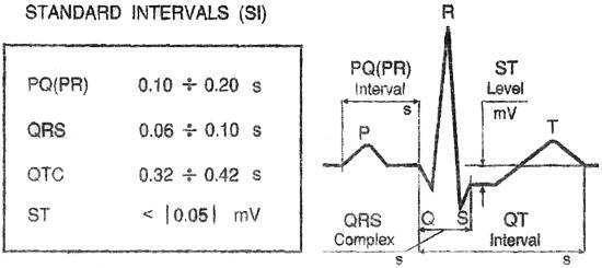 Mesures ECG : PQ, QRT, QTC, ST
